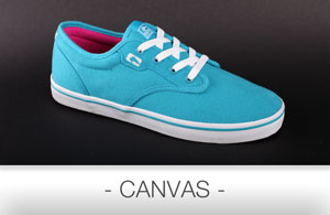 skate shoe Canvas